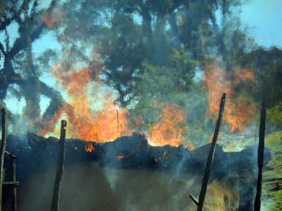 A torched Sengwer home in western Kenya's Embobut forest. The indigenous Sengwer tribe are being forcibly removed from the area as part of the government's attempt to preserve one of the country's water towers. Courtesy: Justin Kenrick/Forest Peoples Programme