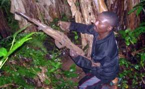 Maï-Maï miliatia man Beni (Nord-Kivu).