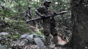 The FDLR is seen as a threat to neighboring Rwanda
