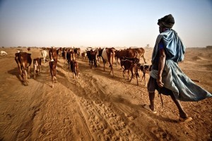 Dja Abdullah, just one victim of the gathering pace of climate change fuelled by coal-fired power stations, has walked 300 km with his cattle in search of fresh pasture in the Sahel region of Mauritania. Credit: Pablo Tosco/Oxfam